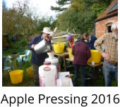 Apple Pressing 2016